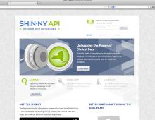 SHIN-NY API
